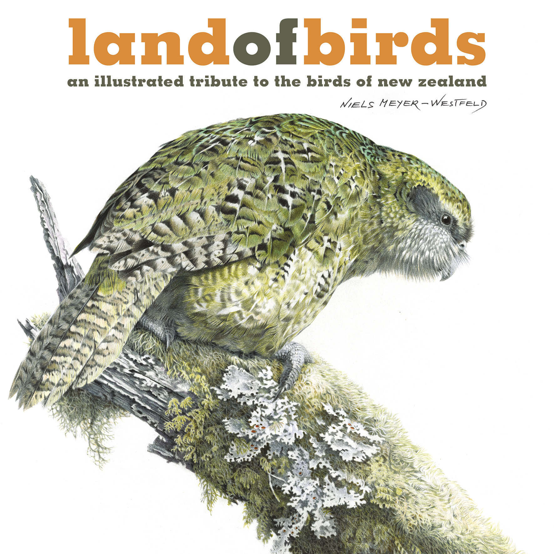 Land of Birds