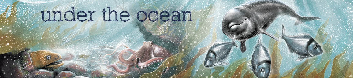 Under the Ocean banner for web page