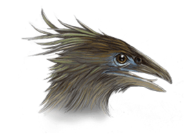 crested-moa-ned-barraud-illustrator-from-moa-to-dinosaurs